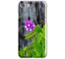 Crown Vetch iPhone Case/Skin