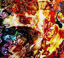 Seahorse: Ocean of Fire by Kristin Sharpe