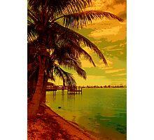 Tropic Heat II Photographic Print