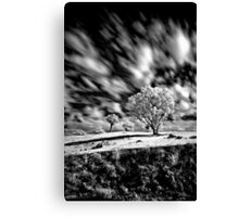 Blown Canvas Print
