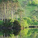 Evening reflections on Loch Eilt. by John Cameron