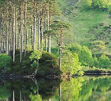Evening reflections on Loch Eilt. by John Cameron