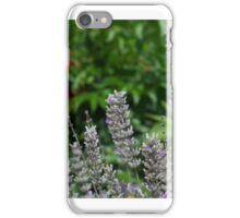 Butterfly on Lavender iPhone Case/Skin