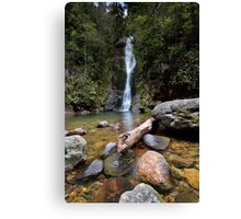 Wentworth Falls Canvas Print