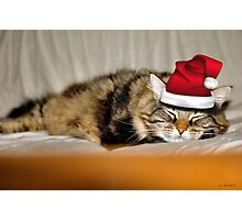 MERRY CHRISTMEOW Photographic Print