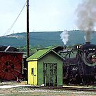 Steam Engine Coming into Train Yard by Susan Savad