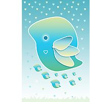 Blue Bird of Happiness Family Photographic Print