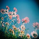 Daisy Ghosts by purelydecorative