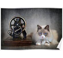Sari Rose #08 ... Sewing Machine Poster