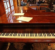 A Grand Keyboard; Waiting For A Piano Man. by aussiebushstick