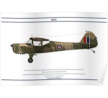 Auster GB 3 Poster