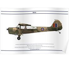 Auster GB 5 Poster