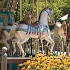 Merry Go Round by Mary Campbell