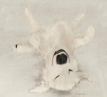 The upside by Hangdogart