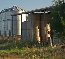 Hay shed and silos by ndarby1