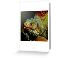 MACHO IGUANA Greeting Card
