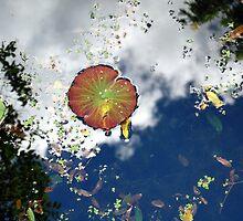 Serendipity by Joanne  Bradley