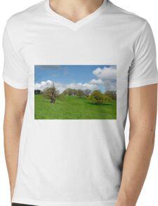 Deer Park, Okeover Estate Mens V-Neck T-Shirt