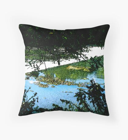 The Wash 2 Throw Pillow