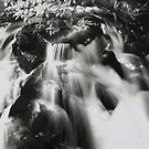 Dartmoor Waterfall by Mike Paget