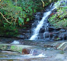 Somersby Falls - Brisbane Water National Park - Gosford NSW by Bev Woodman