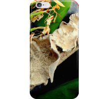 Frilly Fungus, Ginger On The Side iPhone Case/Skin