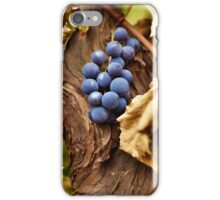Blue grapes on a vine, closeup iPhone Case/Skin