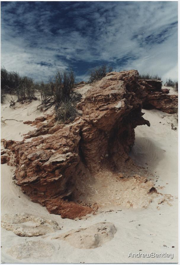 Beach rock by AndrewBentley
