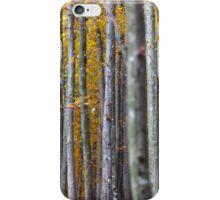Colorful autumnal landscape iPhone Case/Skin