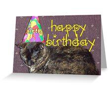 Birthday Cat  Greeting Card