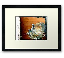 Crate Decaying Framed Print