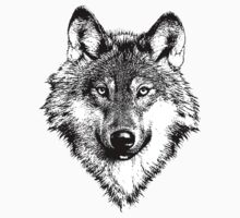 Wolf 5 Kids Clothes
