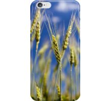 Wheat field closeup iPhone Case/Skin