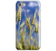 Wheat field closeup iPhone Case/Skin