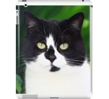 Black and white cat looking at camera iPad Case/Skin