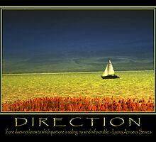 Direction  by Ryan Houston