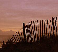 Fence, Westward Ho!, Devon. by ThorBeverley