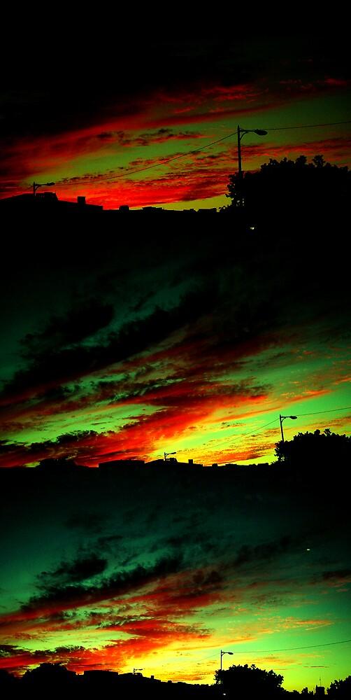 Burning Up by Nicole  Williams