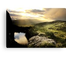Kerry Gold Canvas Print