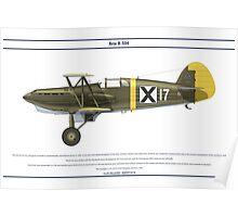 Avia B-534 Bulgaria 3 Poster