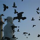 statues and pigeons by andrewcarr