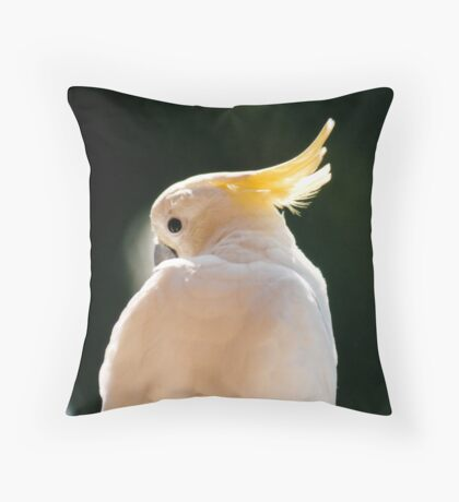 """I Don't Want a Cracker"" Throw Pillow"