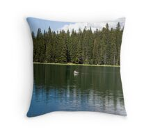 Mesa Lakes Throw Pillow