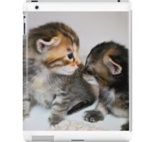 Kitten Kiss iPad Case/Skin