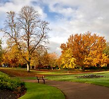 Victoria park by shaz4