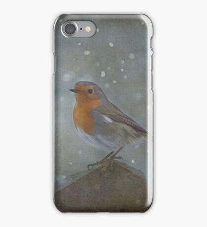 Mr Robins Snowstorm - Textured iPhone Case/Skin