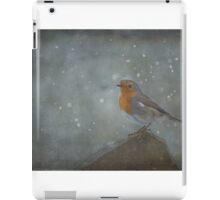 Mr Robins Snowstorm - Textured iPad Case/Skin