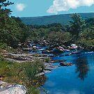 A Dartmoor stream by georgieboy98