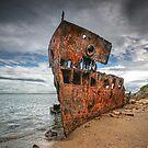 Wrecked by Annette Blattman