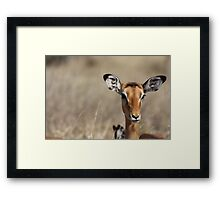 What you doing? Framed Print